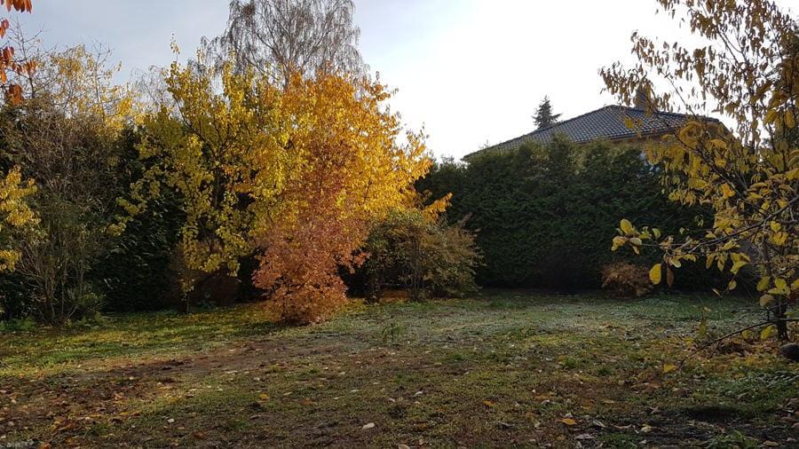 Idyllisches Grundstück in Teltow-Ruhlsdorf