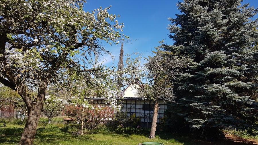 Großzügiges Grundstück in ruhiger Lage mit kleinem vermieteten Haus